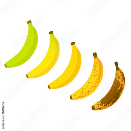 Fényképezés  Banana ripeness chart