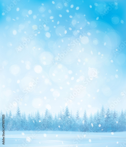 Valokuvatapetti Vector  winter  snow scenes with forest background.