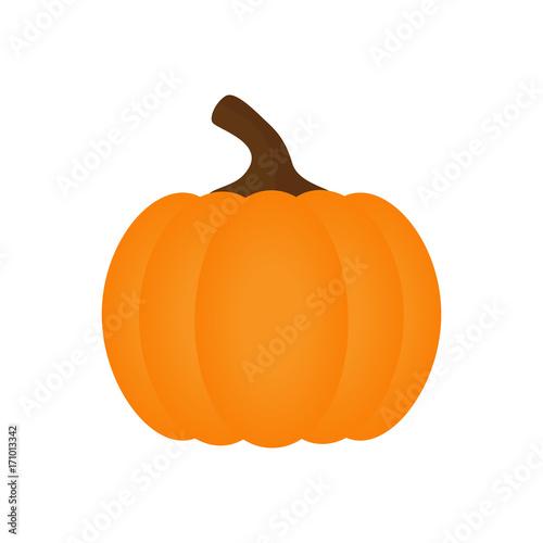 Halloween Pumpkin Vector Art.Orange Pumpkin Vector Illustration Autumn Halloween Pumpkin