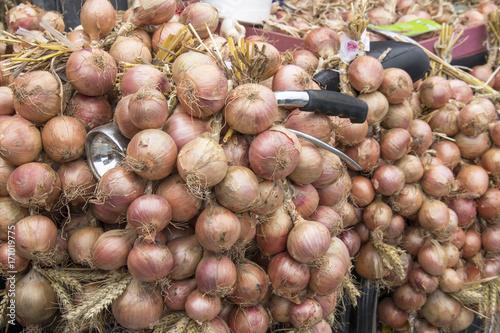 Photo Roscoff. Vélo de Johnnies et ses oignons. Finistère. Bretagne