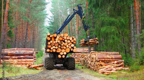 Plakat Lumberjack z nowożytnym żniwiarzem pracuje w lesie. Drewno jako źródło energii odnawialnej.