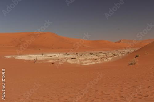 Poster Cuban Red désert namib deadvlei namibie