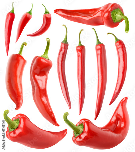 Isolated peppers collection. Various red hot chili peppers isolated on white background with clipping path