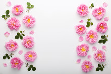 Border Of Pink Damask Roses And Green Leaves On White Background. Flat Lay, Top View.