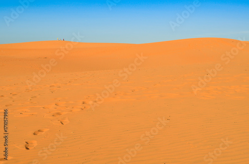 Canvas Prints Cuban Red Beautiful white sand dunes ripples in sunrise morningat at Red sand dunes in Muine, Vietnam. Vacation concept background.