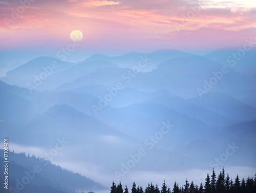 Fototapeta malowniczy las we mgle