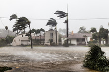 Flooded Las Olas Blvd And Palm...