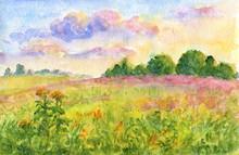 Sunset Meadows - Watercolor Landscape