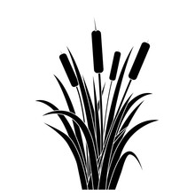 Silhouette Black Water Reed Pl...