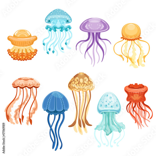Colorful jellyfish set, swimming marine creatures watercolor vector Illustration Tableau sur Toile