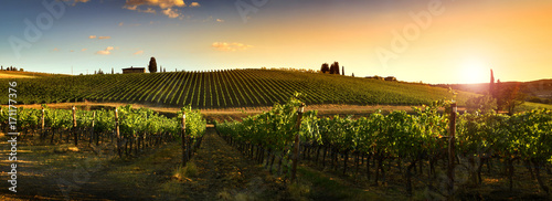 Beautiful landscape of Vineyards in Tuscany at sunset Fototapet