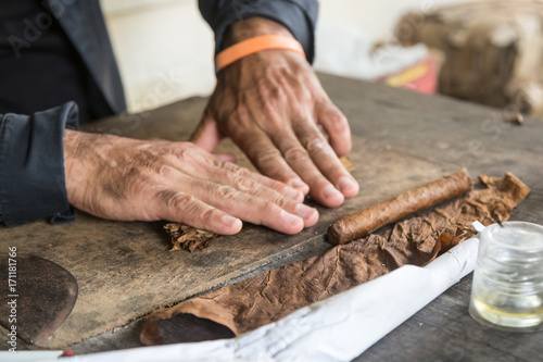 Deurstickers Havana Cuban master showing how to hand roll a cigar