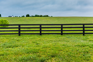 Section of Horse Fence and Pasture