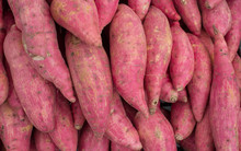 Group Of Japanese Sweet Potato...