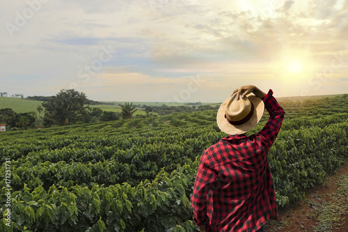 Carta da parati Farmer working on coffee field at sunset outdoor