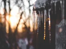 Beautiful Photo Winter, Icicle...