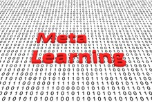 Meta Learning In The Form Of B...
