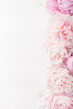 Beautiful Pink Peony Flower Ba...