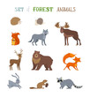 Vector set of wild forest animals made in cartoon style.