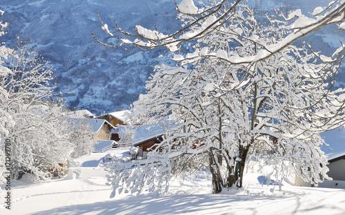 Obraz branches d'arbre recouvertes de neige près d'un village en montagne  - fototapety do salonu