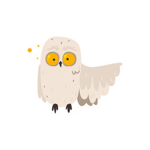 Funny, Crazy Looking Owl With ...