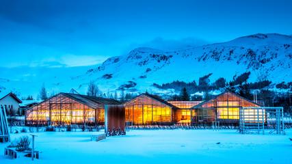 Gewächshäuser auf Island