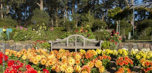 Αφίσα  Botanic garden in Blue mountains national park