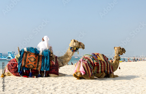 Tour guide offering tourist camel ride on Jumeirah beach in Dubai