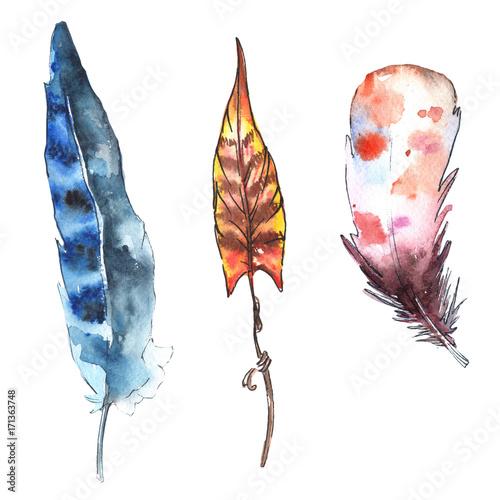 pioro-ptak-akwarela-z-skrzydla-na-bialym-tle