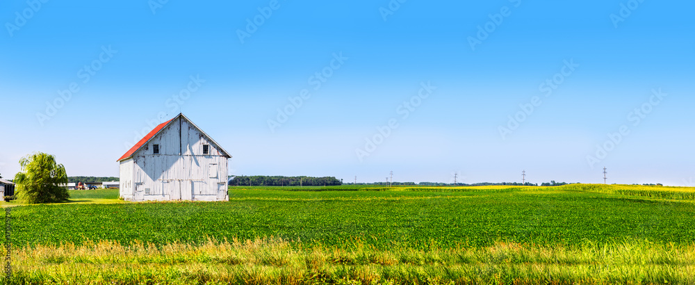 Obraz Panoramic farmland with white barn fototapeta, plakat