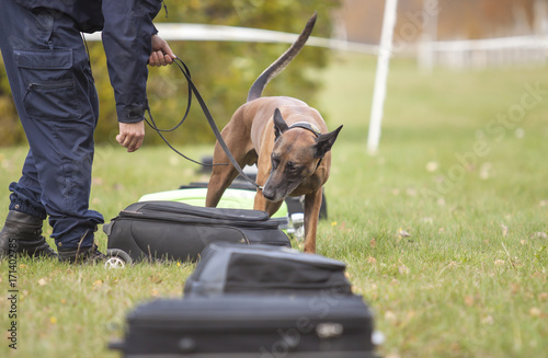 Recess Fitting Dog training a police dog