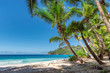 Landscape of paradise tropical island beach. Summer vacation travel holiday background concept.