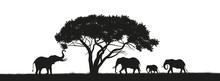 Black Silhouette Of Elephants ...