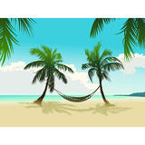 The hammock on the two coconut trees