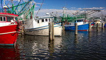 Shrimp Fishing Boats In Harbor...