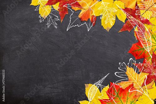 Obraz Autumn Leaves Border - fototapety do salonu