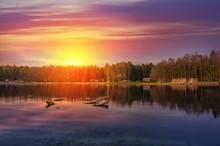 Nature In Twilight Period, Sun...