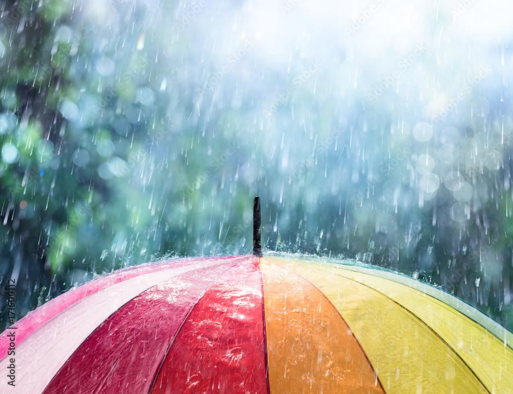 Fototapety, obrazy: Rain On Rainbow Umbrella