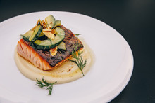 Composed Salmon Dish