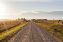 Gravel Road Through Farm Fields
