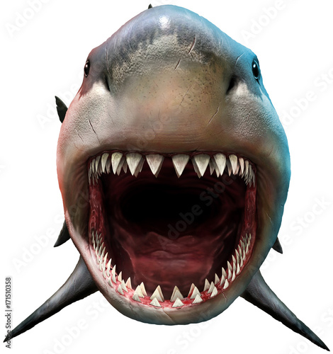 Fotomural Shark with open mouth