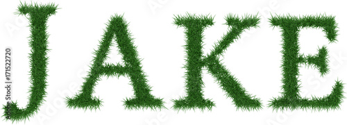 Jake - 3D rendering fresh Grass letters isolated on whhite background Canvas Print