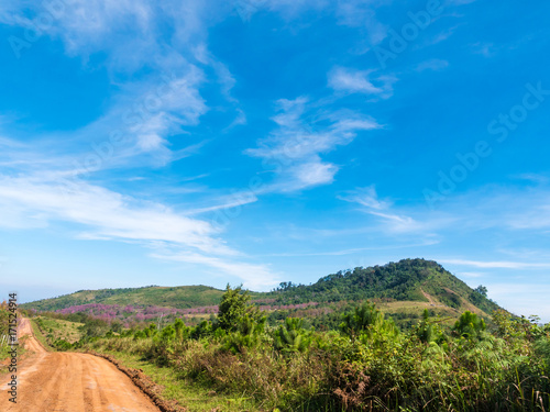 Foto op Canvas Blauwe jeans Beautiful landscape with country road, mountains and blue sky. Travel concept