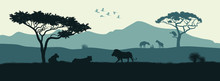 Black Silhouette Of Animals Of...