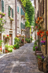 Fototapeta Narrow old street with flowers in Italy