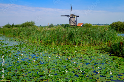 Aluminium Prints Mills Windmühle in Kinderdijk/NL