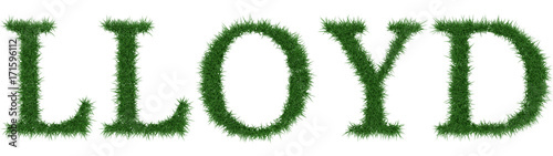 Photo  Lloyd - 3D rendering fresh Grass letters isolated on whhite background