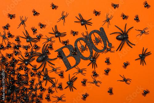 Fényképezés  Halloween background, black spiders on the orange background