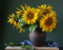 Bouquet Of Sunflowers In A Cla...