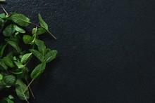 Basil Herb On Black Background